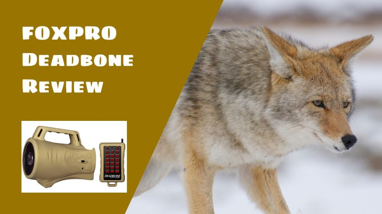 FOXPRO Deadbone Review