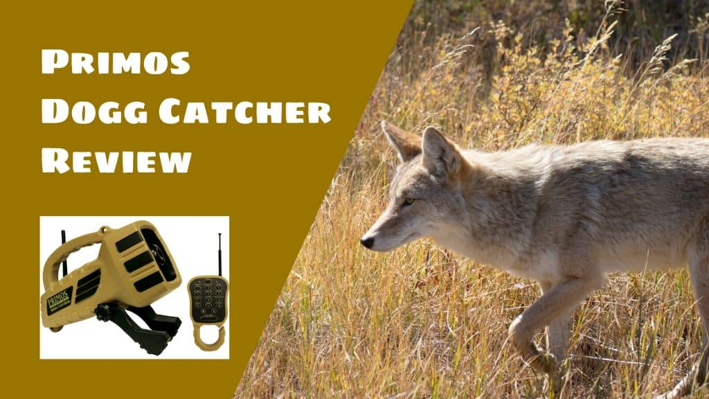 Primos Dogg Catcher Review