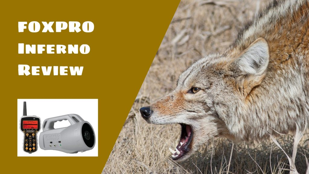 FOXPRO Inferno Review