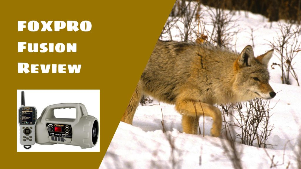 FOXPRO Fusion Review