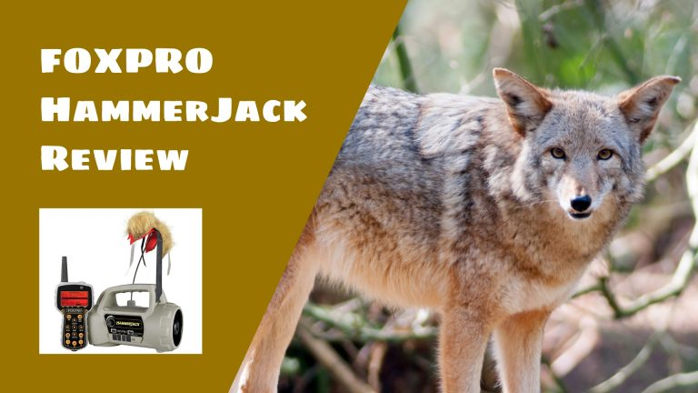 FOXPRO HammerJack Digital Game Call Review