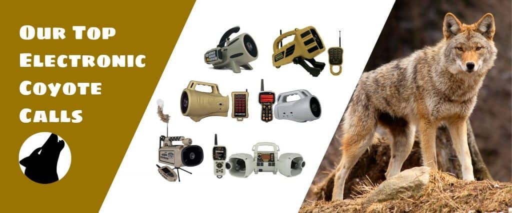 Best Top Rated Electronic Coyote Calls