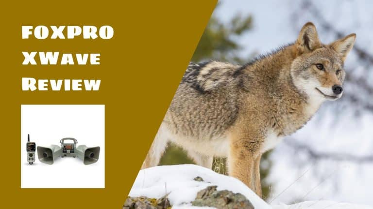 FOXPRO XWave Digital Game Call Review